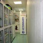 Аптека и зоотовары 14