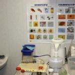 Лаборатория 8